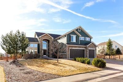 Pradera Single Family Home Under Contract: 5226 Mining Camp Trail