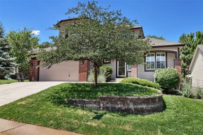 Castle Pines North Single Family Home Active: 8451 Brambleridge Drive