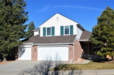 Highlands Ranch Single Family Home Active: 1563 Sunset Ridge Road