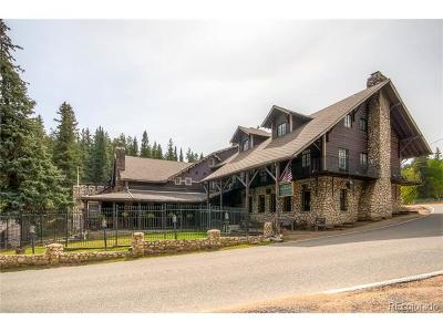 Evergreen Multi Family Home Active: 8136 South Brook Forest Road