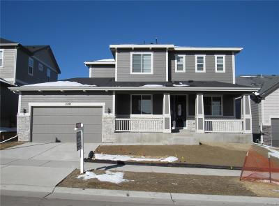 Parker Single Family Home Active: 11203 Ledges Road