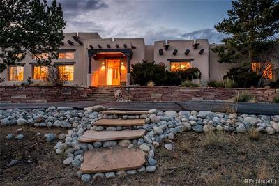 Buena Vista Single Family Home Active: 30812 County Road 356-1