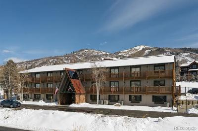 Steamboat Springs Condo/Townhouse Active: 3070 Columbine Drive #217