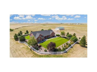 Arapahoe County Single Family Home Active: 56400 East County Road 6