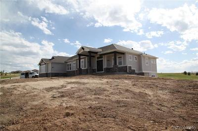 Parker CO Single Family Home Active: $835,000