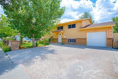 Denver Single Family Home Active: 7689 Conifer Road