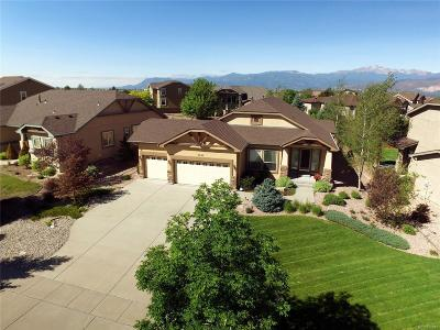 Pine Creek Single Family Home Under Contract: 3623 Oak Meadow Drive