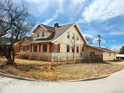 Hudson Single Family Home Active: 753 Birch Street
