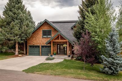 Steamboat Springs Single Family Home Active: 360 4th Street