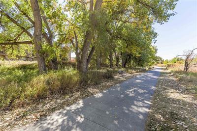 Parker Condo/Townhouse Under Contract: 10787 South Twenty Mile Road #301