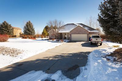 Longmont Single Family Home Active: 2130 Meadow Vale Road