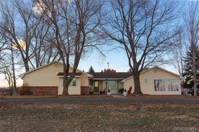 Longmont Single Family Home Active: 9265 Ogallala Road
