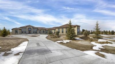 Peyton Single Family Home Active: 8312 Airpark Heights