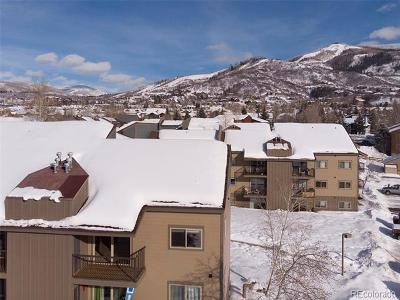 Steamboat Springs Condo/Townhouse Active: 1555 Shadow Run Court #D109