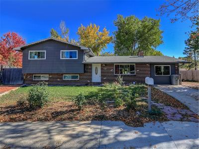 Longmont Single Family Home Active: 19 Bruce Place