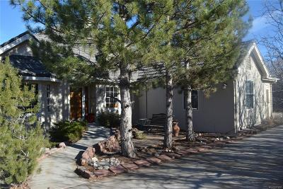 Castle Rock Single Family Home Under Contract: 387 Suffolk Lane