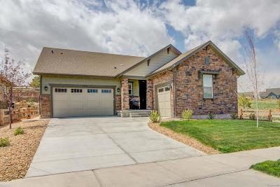 Tallyn's Reach Single Family Home Under Contract: 24302 East Mineral Drive