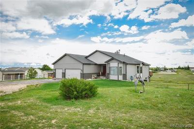 Elbert County Single Family Home Active: 42386 Thunderhill Road