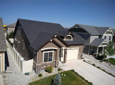 Denver Single Family Home Active: 4665 Walden Court