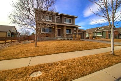 Broomfield Single Family Home Active: 4686 Rabbit Mountain Road