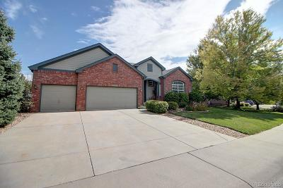 Erie Single Family Home Active: 929 Pope Drive