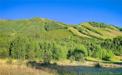 Steamboat Springs Residential Lots & Land Active: 1379 Overlook Drive