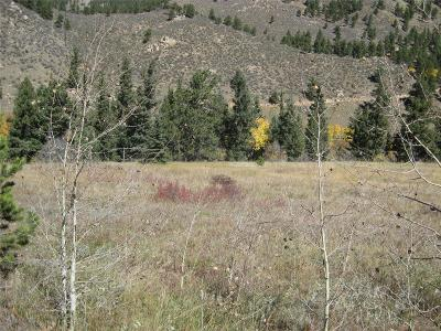 Park County Residential Lots & Land Active: 291 North Fork Road