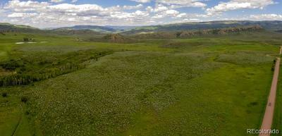 Oak Creek, Phippsburg, Yampa, Toponas Residential Lots & Land Active: Cr 15