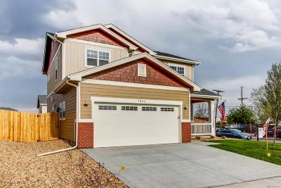 Denver Single Family Home Active: 7864 Florado Street