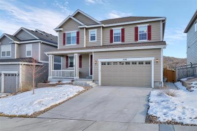 Meadows, The Meadows Single Family Home Under Contract: 1156 Raindrop Way
