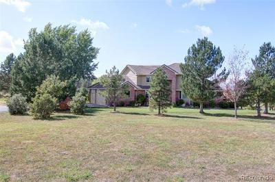 Franktown Single Family Home Active: 255 Grey Squirrel Way