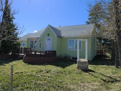 Fairplay Single Family Home Under Contract: 590 5th Street