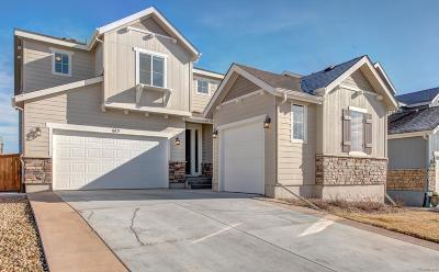 Broomfield County Single Family Home Active: 673 West 172nd Place