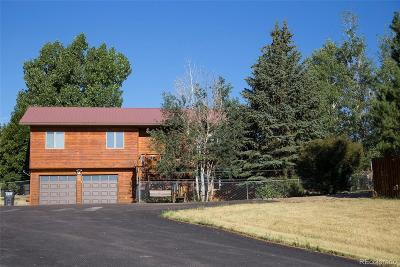 Routt County Single Family Home Under Contract: 42455 County Road 76