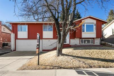 Single Family Home Under Contract: 2183 South Yank Way