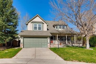 Ironstone, Stroh Ranch Single Family Home Under Contract: 12855 South Crazy Horse Court