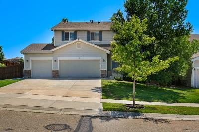 Erie Single Family Home Active: 151 Monares Lane