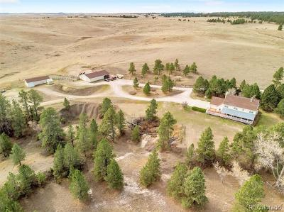 Elbert County Single Family Home Active: 31200 Private Road 57