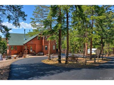 Conifer Single Family Home Active: 27987 Richmond Hill Road