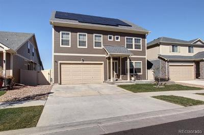 Denver Single Family Home Active: 4855 Ceylon Way