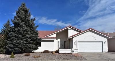 Castle Rock Single Family Home Under Contract: 146 Las Lunas Street