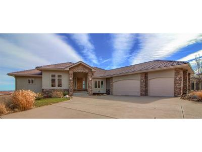 Douglas County Single Family Home Active: 7418 Hawks Nest Trail