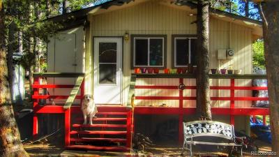 Leadville Single Family Home Under Contract: 36 High Three Circle