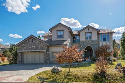Castle Rock Single Family Home Under Contract: 6284 Oxford Peak Place