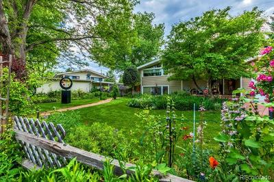 Denver Single Family Home Active: 1465 South Kearney Street