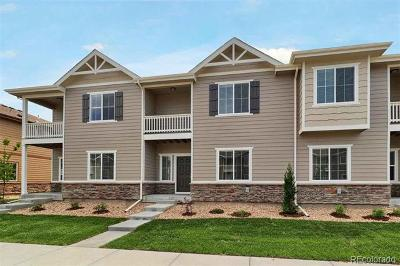 Longmont Single Family Home Active: 1518 Sepia Avenue