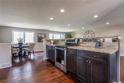 Littleton Single Family Home Active: 7050 South Newland Court
