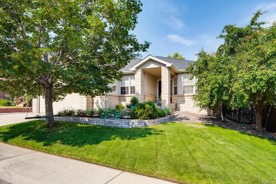 Centennial Single Family Home Under Contract: 7627 South Grape Way