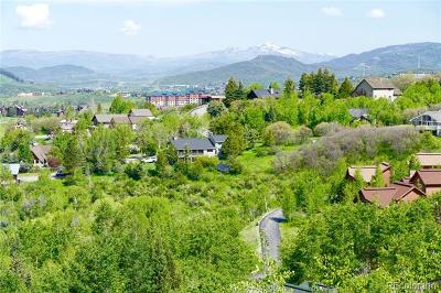 Steamboat Springs Residential Lots & Land Active: 2655 Anthonys Circle