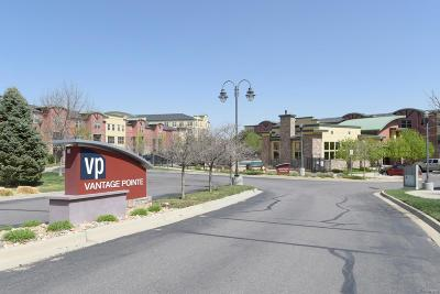 Broomfield Condo/Townhouse Under Contract: 13598 Via Varra #216